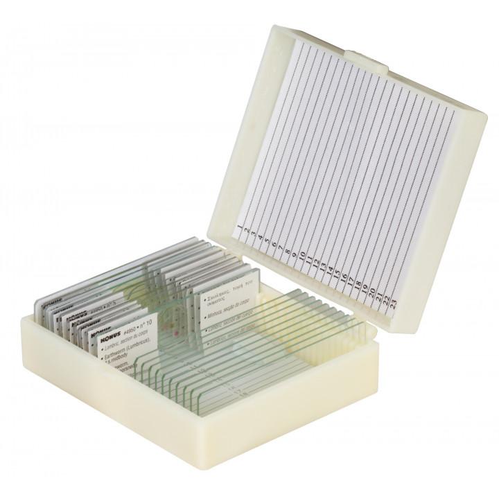 Набор микропрепаратов Konus 25: «Клетки и ткани животных»